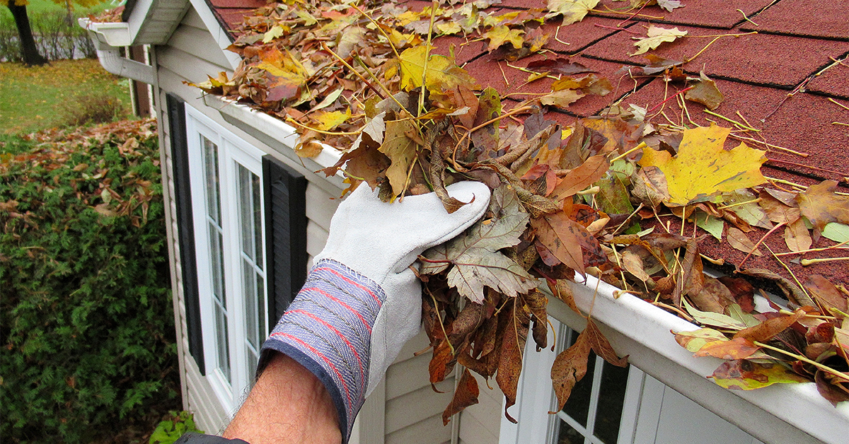 Fall Home Cleanup